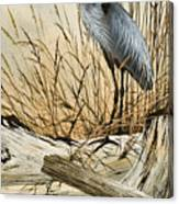Driftwood Splendor Canvas Print