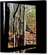 From Inside An Old Barn Canvas Print