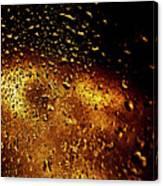 Droplets I Canvas Print