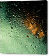 Droplets II Canvas Print