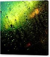 Droplets Xii Canvas Print