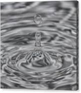 Drops 3 Canvas Print
