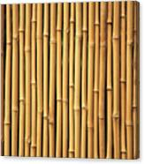 Dry Bamboo Rows Canvas Print