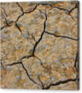 Dry Cracked Lake Bed Canvas Print