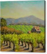Dry Creek Valley View Canvas Print