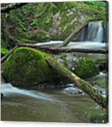 Dual Falls Canvas Print