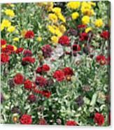 Dubai Flowers Canvas Print