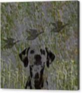 Duck Hunter Canvas Print