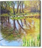 Duck Pond I Canvas Print