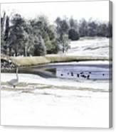 Broadmoor Winter Swim Canvas Print