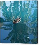 Duck Swimming In The Blue Lagoon Canvas Print