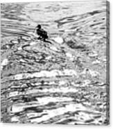 Ducks Swirl Canvas Print