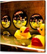 Ducky Reflections Canvas Print