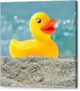 Ducky's Fun Day  At The Beach Canvas Print