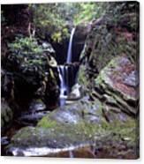 Duggers Creek Falls Canvas Print