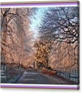 Dundalk Avenue In Winter. L A With Decorative Ornate Printed Frame. Canvas Print
