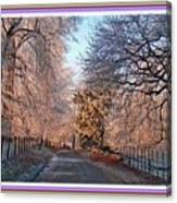 Dundalk Avenue In Winter. L B With Decorative Ornate Printed Frame. Canvas Print
