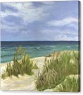 Dune Grasses Canvas Print