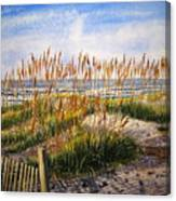 Dunes At Dawn Canvas Print