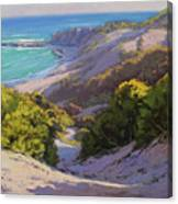 Dunes At Soldiers Beach Canvas Print