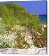 Dunes Trail The Emerald Coast Canvas Print
