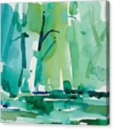 Dunfield-creek-_37-11x14 Canvas Print