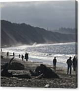 Dungeness Spit Canvas Print