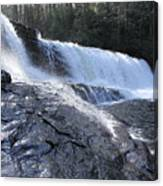 Dupont Forest Hooker Falls Canvas Print