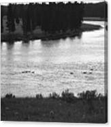 Dusk at the Yellowstone River Canvas Print