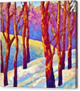 Dusk's Veil Canvas Print