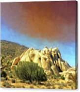 Dust Storm Over Joshua Tree Canvas Print