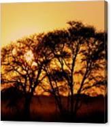 Dusty Sunrise Canvas Print