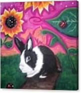 Dutch Bunny at Dusk Canvas Print