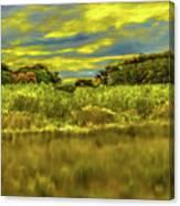 Dyarna #c9 Canvas Print