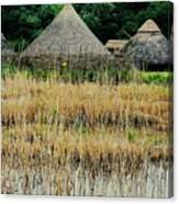 Dyflin Viking Village, Ireland Canvas Print