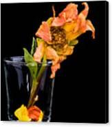 Dying Dahlia Flower Canvas Print