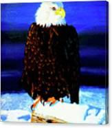 Eagel Canvas Print