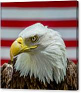 Eagle 5 Canvas Print