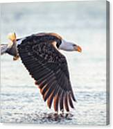 Eagle Catch Canvas Print