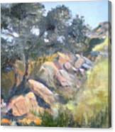Eagle Crest View Canvas Print