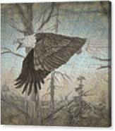Eagle  In Forest Canvas Print