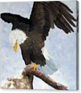 Eagle Landing Canvas Print