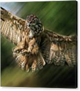 Eagle Owl Landing Canvas Print