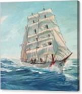 Sailing Eagle Canvas Print