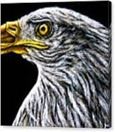 Eagle - Sa96 Canvas Print
