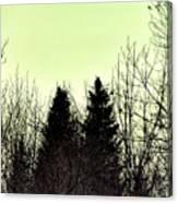 Eagle Silhouette Canvas Print