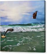 Eagles At Sea Wildlife Art Canvas Print