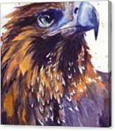 Eagle's Head Canvas Print