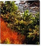 Early Autumn Along The Naugatuck Canvas Print