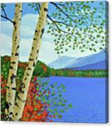 Early Autumn Birches Canvas Print